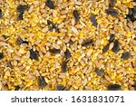 Mixed Bird Seed. Top Down View.