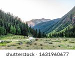 View Of Green Alpine Meadow...