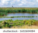 Watchtower And Marshland On...