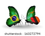 two butterflies with flags on... | Shutterstock . vector #163272794