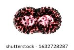 Small photo of Binary fission cells division motion graphic on white background