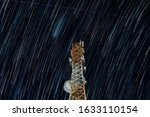 Small photo of Cell Tower under a rain of stars