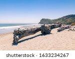 Big Wooden Log On Sand Beach...
