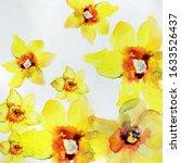 Watercolor Daffodil Spring...