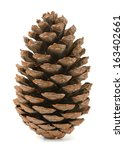 Single Pine Cone Isolated On...