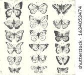 Hand Drawn Line Art Insects Set....