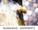 A Textured Fragment Of A Bronze ...