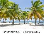 Dominican Republic  Punta Cana...