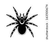 black   white vector of... | Shutterstock .eps vector #163500674