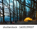 Night Camp In The Forest. Ligh...