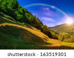 forest on a steep mountain slope - stock photo