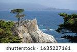 Monterey  California Usa   05...
