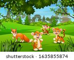 wild animal playing in the... | Shutterstock .eps vector #1635855874