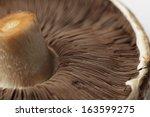 Uncooked Portobello Mushroom ...