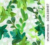 hand drawn fresh spring... | Shutterstock .eps vector #1636188487