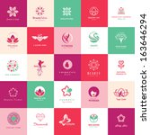 set of icons for beauty ... | Shutterstock .eps vector #163646294
