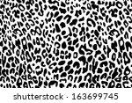 özet,afrika,afrika,hayvan,sanat,zemin,arka plan,büyük,siyah,kahverengi,kedi,çita,giyim,kat,dekor