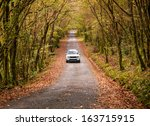 Car On A Road In The Forest In...
