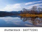 Peacefull Lake  Bare Trees And...