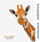 Cute Giraffes On A Transparent ...
