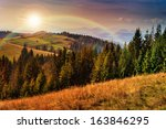 mountain autumn landscape pine trees near valley and colorful forest on hillside under blue sky with clouds - stock photo