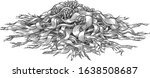 welwitschia illustration ... | Shutterstock .eps vector #1638508687