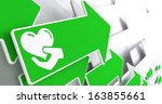 icon of heart in the hand on... | Shutterstock . vector #163855661