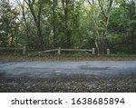 An Abandoned Old Asphalt Road...