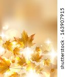 autumn leaves  very shallow... | Shutterstock .eps vector #163907915