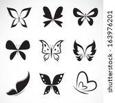 Stock vector vector group of butterfly on white background 163976201