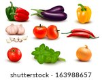 The Big Colorful Group Of...