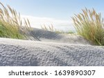 Wide Beach And Dune Grass At...