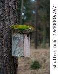 Moss Covered Bird House  Hesse...