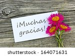 white card with lettering thank ... | Shutterstock . vector #164071631