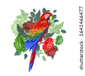 parrot on the branches of a... | Shutterstock . vector #1641466477