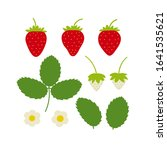Strawberry Plant Drawing With...