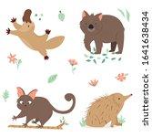set of native australian... | Shutterstock .eps vector #1641638434