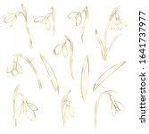 vector golden snowdrops set.... | Shutterstock .eps vector #1641737977