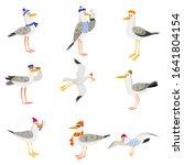 Set Of Funny Cartoon Gulls In...