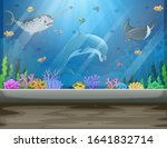 Underwater Museum With Fishes...