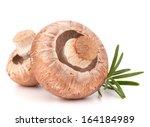 brown champignon mushroom and... | Shutterstock . vector #164184989