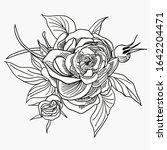composition of peonies ... | Shutterstock .eps vector #1642204471