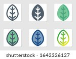 leaf icon in isolated on white...
