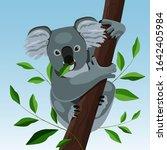 cute koala on a tree and eats a ... | Shutterstock .eps vector #1642405984
