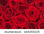 Stock photo beautiful red roses 164243225