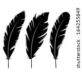 illustration set feathers... | Shutterstock . vector #164255849