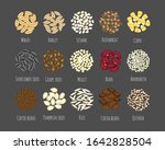 set of different seeds and...   Shutterstock .eps vector #1642828504