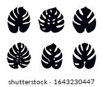 icons with tropical palm leaves ... | Shutterstock .eps vector #1643230447