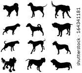 set of black vector silhouette... | Shutterstock .eps vector #164341181