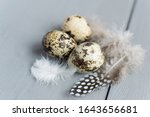 Quail Eggs. Farm Natural Food...